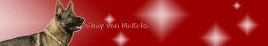Banner Website Jaimy von MaKeRa